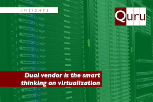 Dual vendor virtualization